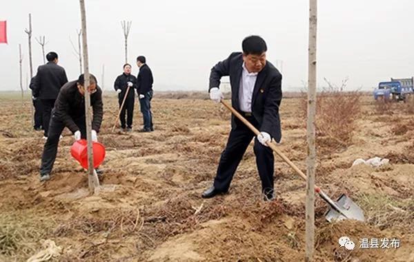 溫縣開展2018年冬季義務植樹活動